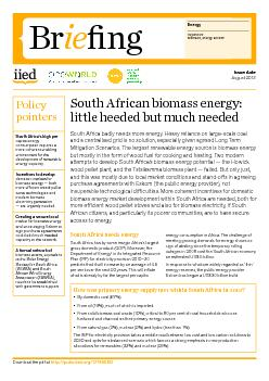 PolicypointersSouth Africa's high per capita energy consumption r