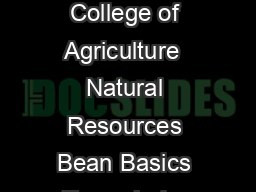 Cooperative Extension System College of Agriculture  Natural Resources Bean Basics To cook dry beans