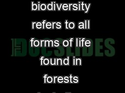 Biodiversity is life Biodiversity is our life Forest Biodiversity Forest biodiversity refers to all forms of life found in forests including trees plants animals fungi and microorganisms and their rol