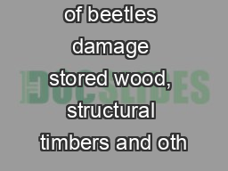 everal kinds of beetles damage stored wood, structural timbers and oth