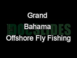 Grand Bahama Offshore Fly Fishing