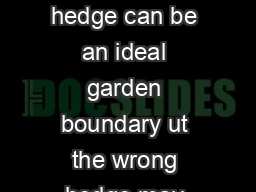 Over the garden hedge The right hedge can be an ideal garden boundary ut the wrong hedge may bring problems