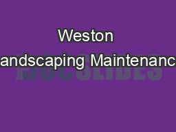 Weston Landscaping Maintenance