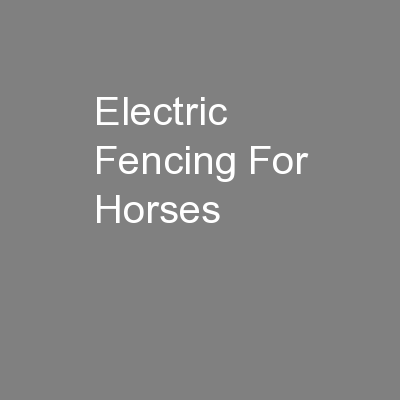 Electric Fencing For Horses PowerPoint PPT Presentation