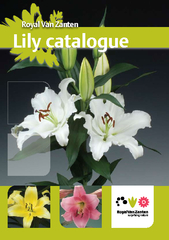 Lily Specialties 2009  •  1