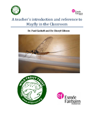 A teacher's introduction and reference to Mayfly in the Classroom PDF document - DocSlides