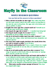 MAYFLY RESEARCH QUESTIONS PDF document - DocSlides