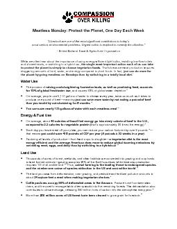 Meatless Monday: Protect the Planet, One Day Each Week