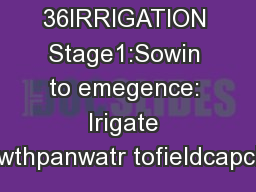 36IRRIGATION Stage1:Sowin to emegence: Irigate wthpanwatr tofieldcapci PDF document - DocSlides
