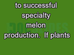 to successful specialty melon production.  If plants