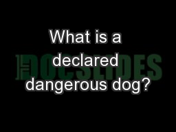 What is a declared dangerous dog?