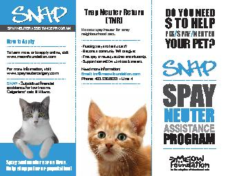 DO YOU NEED TO HELPSPAYNEUTERYOUR PET? PDF document - DocSlides