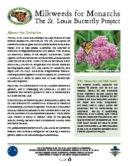 The St. Louis Butterfly Project