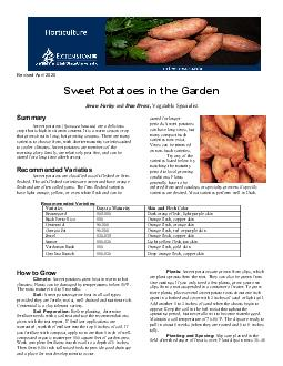 Sweet Potatoes in the Garden Jeran Farley and Dan Drost Summary Sweet potatoes  Ipomoea batatas are a delicious crop that is high in vitamin content