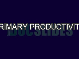 PRIMARY PRODUCTIVITY PowerPoint PPT Presentation