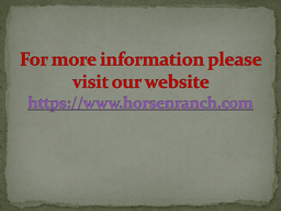 Cheap Horses For Sale