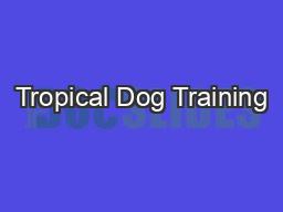 Tropical Dog Training PowerPoint PPT Presentation