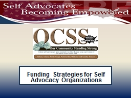 Funding Strategies for Self Advocacy Organizations PowerPoint PPT Presentation