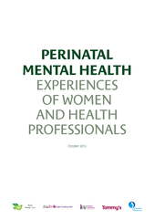 PERINATAL MENTAL HEALTH EXPERIENCES OF WOMEN AND HEALTH PROFESSIONALSO PowerPoint PPT Presentation