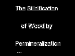 Petrified Wood:   The Silicification of Wood by Permineralization ...
