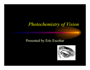 Photochemistry of VisionPresented by Eric Escobar