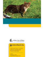 How to Help Feral Cats A stepbystep guide to TrapNeuterReturn   Alley Cat Allies A teacher at the high school your boss the clerk at the grocery storepeople all over the country care for outdoor cats