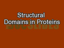 Structural Domains in Proteins