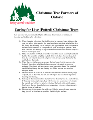 Christmas Tree Farmers ofCaring for Live (Potted) Christmas Trees ...