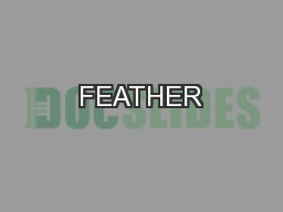 FEATHER PowerPoint PPT Presentation
