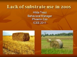 Lack of substrate use in zoos PowerPoint PPT Presentation