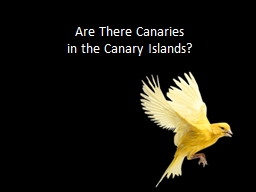 Are There Canaries