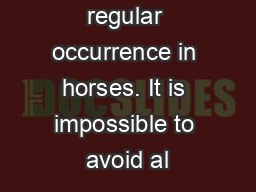 Stress is a regular occurrence in horses. It is impossible to avoid al