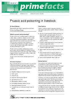 prussic acid can, therefore, be absorbed and lead