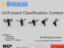 UCR Insect Classification Contest