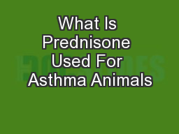 What Is Prednisone Used For Asthma Animals