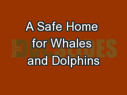 A Safe Home for Whales and Dolphins