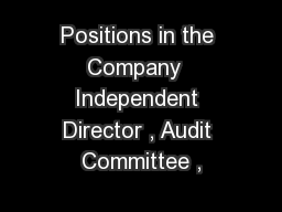 Positions in the Company  Independent Director , Audit Committee ,