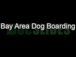 Bay Area Dog Boarding