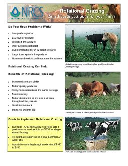 Do You Have Problems With: Low quality pasture Poor livestock conditio