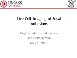 Live-Cell Imaging of Focal Adhesions