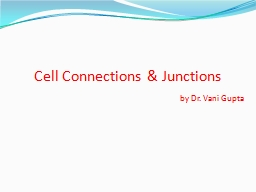 Cell Connections & Junctions