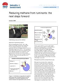Reducing methane from ruminants: the next steps forward October 2009