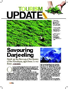 ur story of Darjeeling begins thousands of miles away from its lush  .