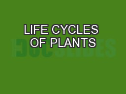 LIFE CYCLES OF PLANTS
