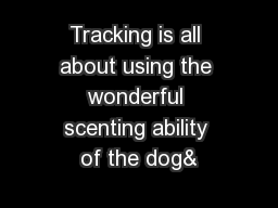 Tracking is all about using the wonderful scenting ability of the dog&