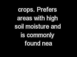 crops. Prefers areas with high soil moisture and is commonly found nea