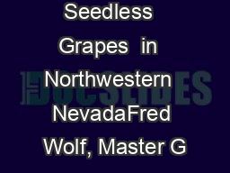Growing  Seedless  Grapes  in  Northwestern  NevadaFred Wolf, Master G