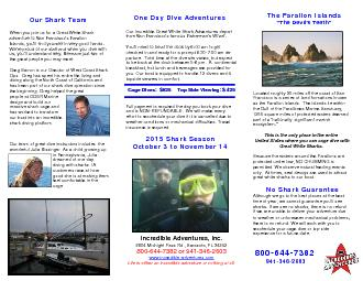Our Incredible Great White Shark Adventures depart PowerPoint PPT Presentation
