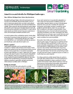 Smart trees and shrubs for Michigan landscapes