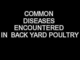 COMMON DISEASES ENCOUNTERED IN  BACK YARD POULTRY